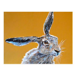 Hare brained! postcard