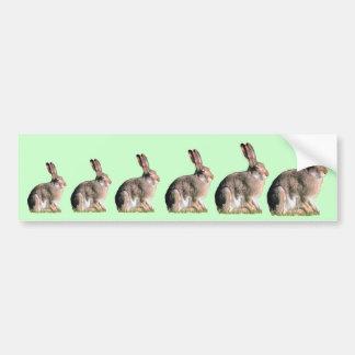 Hare Bumper Sticker