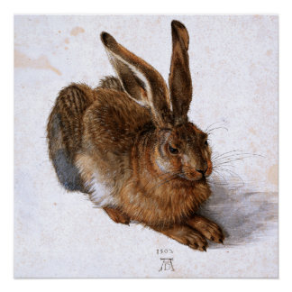 """""""Hare"""" by Albrecht Dürer, 1502 Poster"""