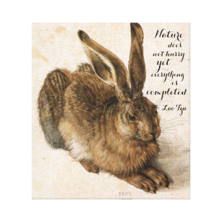 Hare by Durer with Nature Quote 17 x 19 Inch Canvas Print