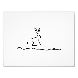 hare field hare wildly photographic print