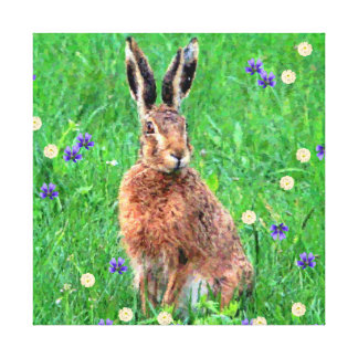 Hare in the Meadow Canvas Print