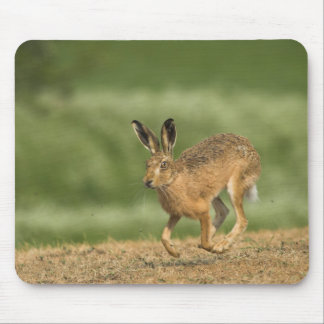 Hare Mousepad