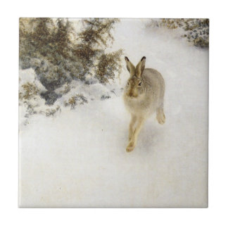 Hare of winter tile