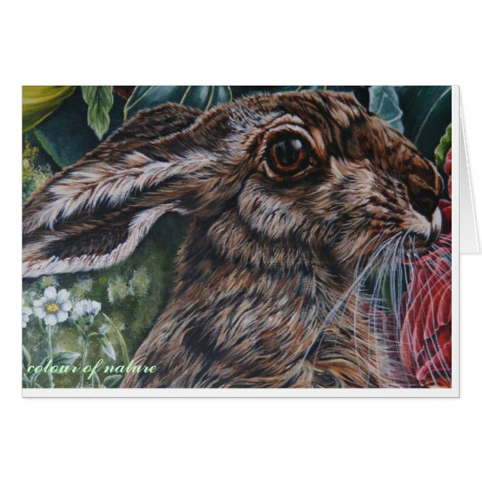 hare today gone tomorrow card