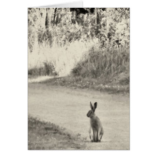 Hare today greeting card