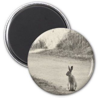 Hare today 6 cm round magnet