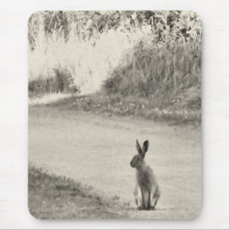Hare today mouse mat
