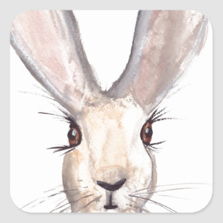 Hare watercolour painting square sticker