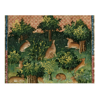 Hares in a Wood Postcard