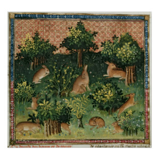 Hares in a Wood Poster