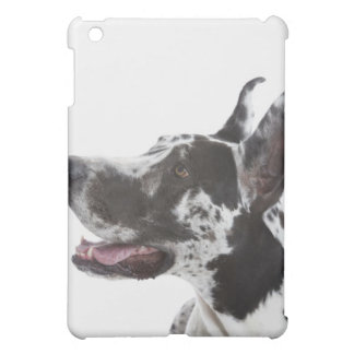 Harlequin Great Dane Case For The iPad Mini