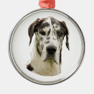 Harlequin Great Dane dog photo Silver-Colored Round Decoration