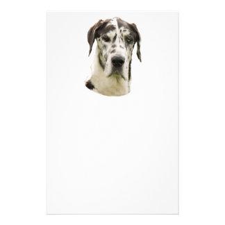 Harlequin Great Dane Portrait Photo 14 Cm X 21.5 Cm Flyer