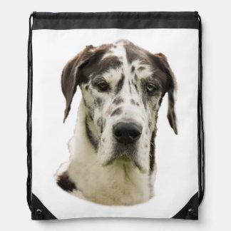 Harlequin Great Dane Portrait Photo Drawstring Bag