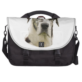 Harlequin Great Dane Portrait Photo Laptop Bags