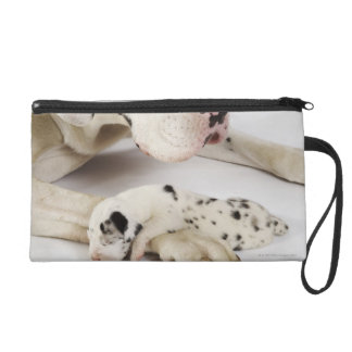 Harlequin Great Dane puppy sleeping on mother Wristlet Clutch
