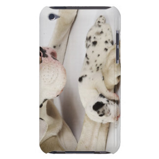 Harlequin Great Dane puppy sleeping on mother's Barely There iPod Cover