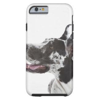 Harlequin Great Dane Tough iPhone 6 Case