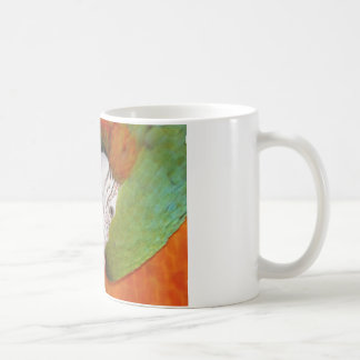 Harlequin macaw coffee mug