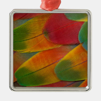 Harlequin Macaw parrot feathers Christmas Ornament