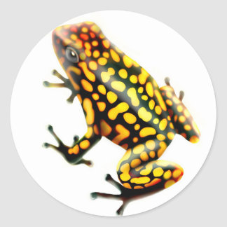 Harlequin Poison Frog Round Sticker