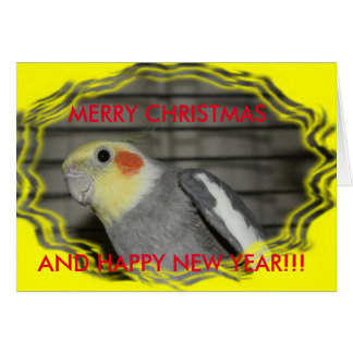 Harley Cockatiel Christmas CARD