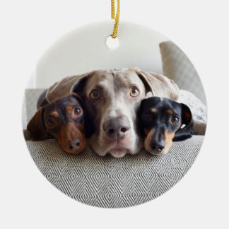 Harlow, Indiana and Reese Christmas Ornament