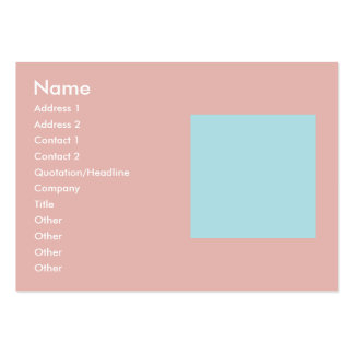 Harmonious Color Combination Mix Template Pack Of Chubby Business Cards