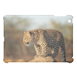 Harnas Wildlife Sanctuary, Namibia iPad Mini Cover