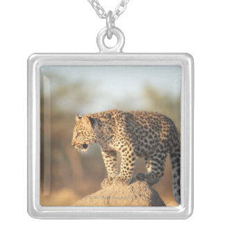 Harnas Wildlife Sanctuary, Namibia Silver Plated Necklace