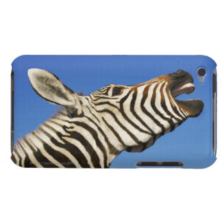 Harnas Wildlife Sanctuary, Namibia, Southern iPod Touch Cover