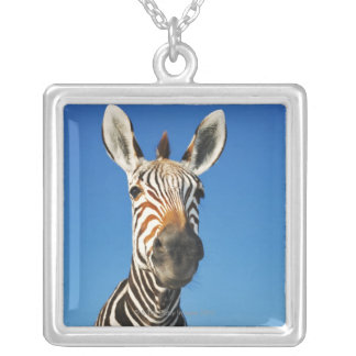 Harnas Wildlife Sanctuary, Namibia, Southern Silver Plated Necklace