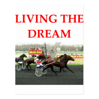 harness racing post cards