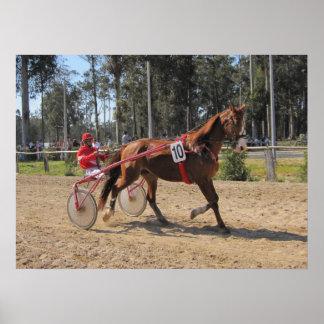 Harness racing Print