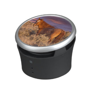 Harney County Wild horse stands alert Bluetooth Speaker