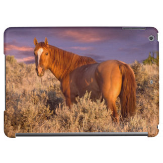 Harney County Wild horse stands alert Cover For iPad Air