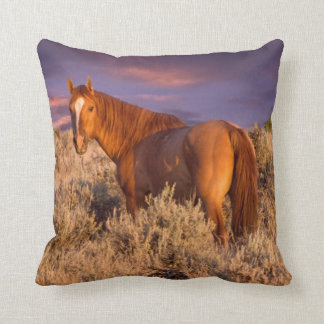 Harney County Wild horse stands alert Cushion