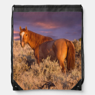 Harney County Wild horse stands alert Drawstring Bag