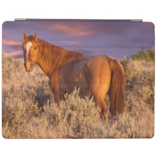 Harney County Wild horse stands alert iPad Cover
