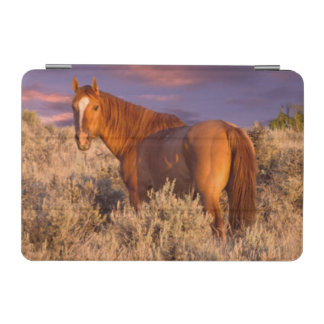 Harney County Wild horse stands alert iPad Mini Cover
