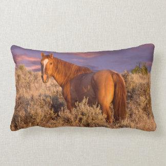 Harney County Wild horse stands alert Lumbar Cushion