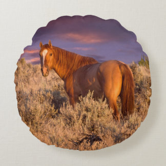Harney County Wild horse stands alert Round Cushion
