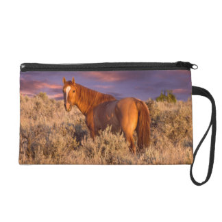 Harney County Wild horse stands alert Wristlet