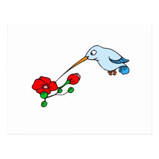 Harold Hummingbird Postcard