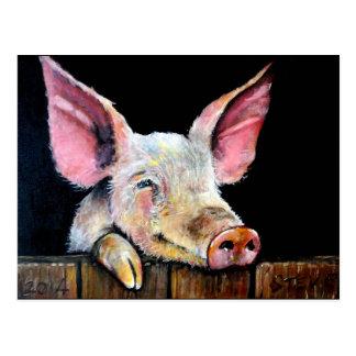 Harold (Steptoe pig) Postcards