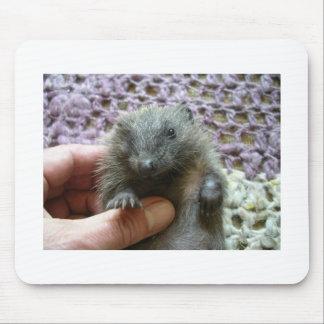 Harold the Hedgehog Mousepad