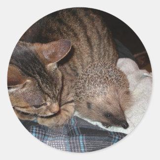 Harold The Hedgehog Sticker