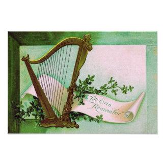 Harp of Erin Shamrock Green Photo Print