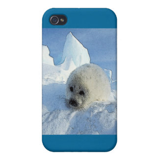 Harp Seal 2 Covers For iPhone 4